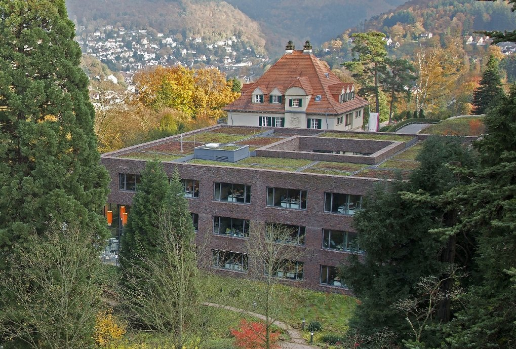 The Heidelberg Institute for Theoretical Studies (HITS) takes part in IMPRS-HD with the groups working on Theoretical Astrophysics on the Physics of Stellar Objects, and on  High-Energy Astrophysics and Cosmology.<br>